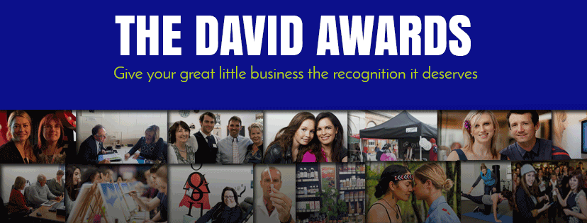 The David Awards, Recognizing Excellence in small businesses like Heat Pumps NOW